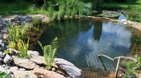 Biopiscine piscine naturali c c s r l impianti di - Biopiscine prezzi ...